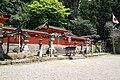 Udamikumari1264.jpg