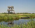 Uitkijktoren en kano aanleg stijger in de Alde Feanen.jpg