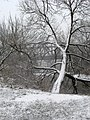 Ukraine Irpen 2010. First snow. Railway Bridge 2.jpg