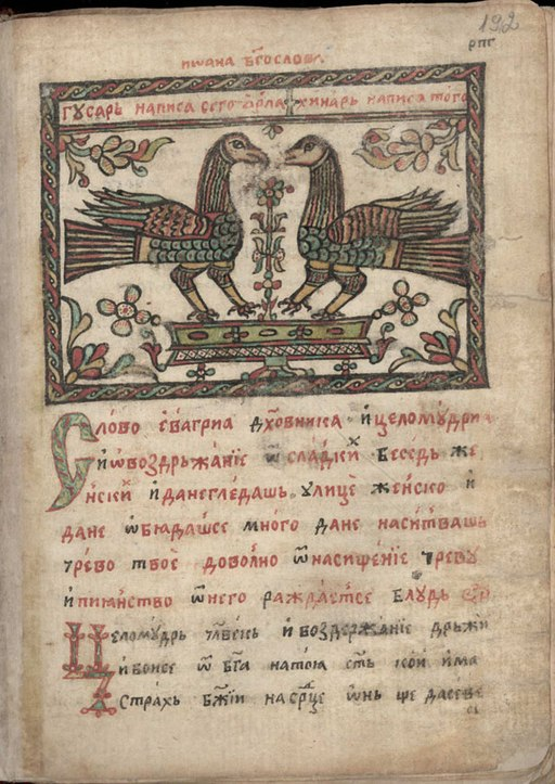 Unknown birds, Miscellany