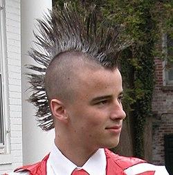 Wondrous User Dannyquack Mohawk Wikivisually Short Hairstyles Gunalazisus
