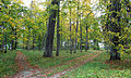 Uue-Põltsamaa mõisa park 2.JPG