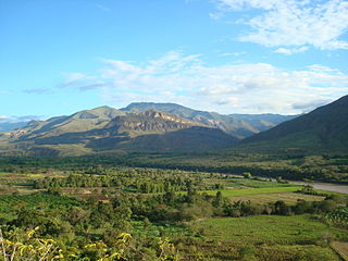 Marañón dry forests
