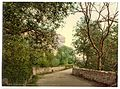 Ventnor, road to the Undercliff, Isle of Wight, England-LCCN2002708268.jpg