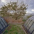 Vervallen fruitmuur, gezien tussen twee druivenserres door - Monster - 20405801 - RCE.jpg