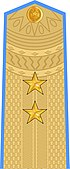 Vietnam People's Air Force Lieutenant General.jpg