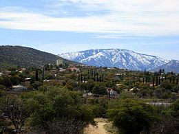 View of Oracle, AZ looking south - Mt. Lemmon in background.jpg