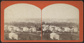 View of Oswego, New York, from Robert N. Dennis collection of stereoscopic views.png