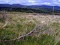 View to Knockagar - geograph.org.uk - 844890.jpg