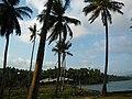 Viper island andmans (5).jpg