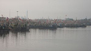 Veraval - Viraval Fishery Harbour