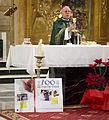 Virgen de Altagracia 2014 23 (12586356955).jpg
