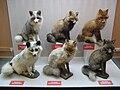 Vulpes vulpes colour variations.jpg