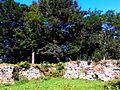 WIKIMEDIA GREEN PARK AT OLD FORTRESS IN TOWN OF BAR VINNYTSIA REGION STATE OF UKRAINE PHOTOGRAPH BY VIKTOR O LEDENYOV 18082014 (02).jpg