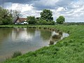 Wacton Common Pond - geograph.org.uk - 133065.jpg