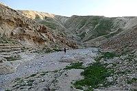 Wadi-Makukh-648.jpg