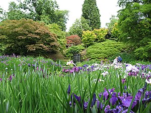 Wakehurst Place - Wakehurst Place in June