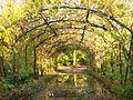 Walkden Gardens, Sale- pergola.JPG