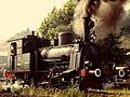 Walsum 5 (Eisenbahnmuseum).jpg