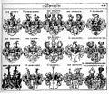 Wappenvariante der edelfreien Herren von Graben (Siebmacher).jpg
