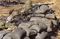 Warrior Days training class, teaching troops how to prepare for real life war situations 020905-F-ZS322-001.jpg
