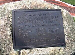 Watauga Association - DAR monument in Elizabethton, Tennessee, recalling the establishment of the Watauga Association