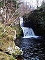 Waterfall - geograph.org.uk - 754464.jpg