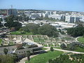 Weizmann Institute View IMG 2409.JPG