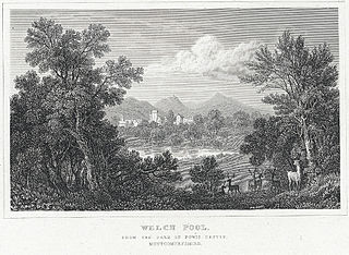 Welch Pool, from the Park of Powis Castle, Montgomeryshire