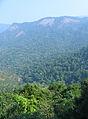 Western Ghats Vegetation - View en route Kottiyoor to Mananthavady.jpg