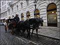 Wiedeń - zaczarowana dorożka - panoramio.jpg