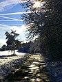 Winter - panoramio (47).jpg