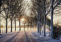 Winter Wonderland (part 2) (6537752463).jpg