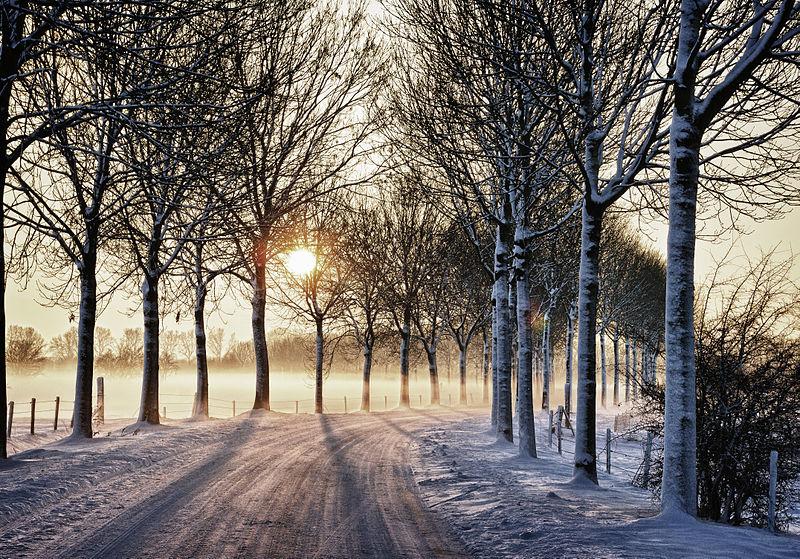Best Winter Sun Canary Islands