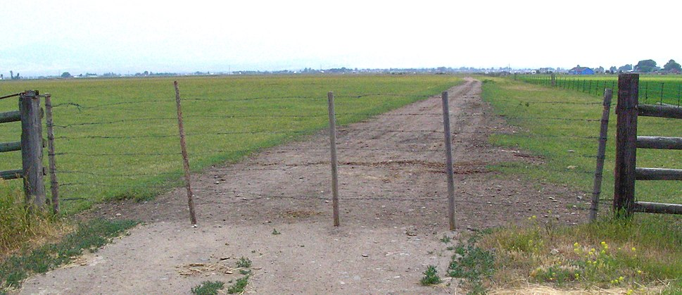 Wire gate