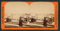 Woodward's Garden, looking south, from Robert N. Dennis collection of stereoscopic views.png