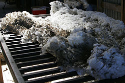 Wool in a shearing shed