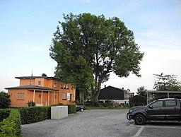 Am Elisabethheim in Wuppertal