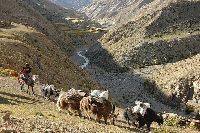 Nepal occidentale