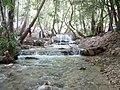 Yasouj-River - panoramio.jpg