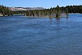 Yellowstone River 03.JPG