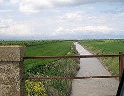 Zapponeta, Province of Foggia, Italy - panoramio.jpg