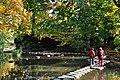 """""""Nymphenteich"""" am Zürichhorn 2011-10-28 15-57-16.JPG"""