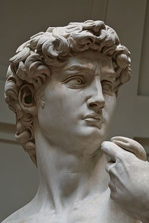 'David' by Michelangelo Fir JBU013.jpg