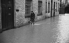 (Flooding in the Severn Valley) (6435402343).jpg