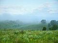 Балка Пестрая в тумане 01.jpg