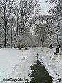 Біля Аскольдової могили - panoramio.jpg