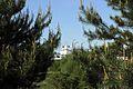 Вид на Покровский монастырь..jpg