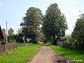 В посёлке - panoramio.jpg