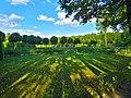 Екатерининский парк, регулярный парк.jpg